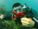 Bautismo de buceo Javea en la Reserva Marina Cabo San Antonio