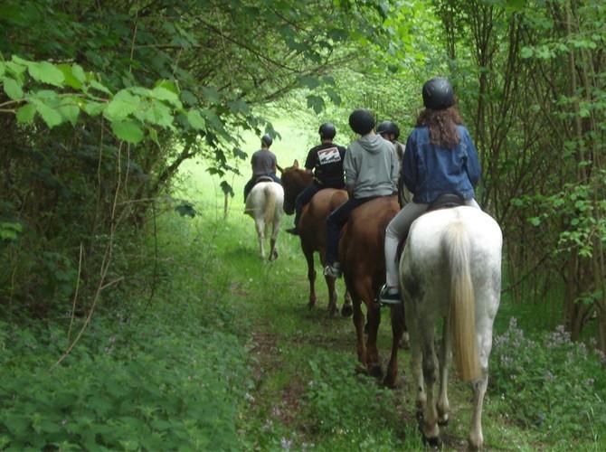 Ruta caballo valencia