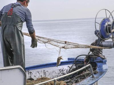 Vive la experiencia de ser Pescador por un día en Torrevieja
