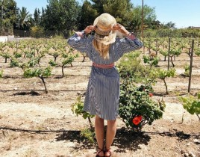 Visita a Bodegas Faelo + Degustación de Vino