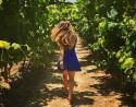 Cata de Vinos Bodega Pago de Tharsys + Visita guiada con Comida