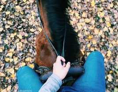 Paseos a caballo en Morella para 2. ¡Vive la naturaleza!