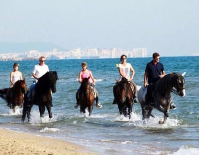 Paseo a Caballo en Playa Oliva Nova (Valencia)