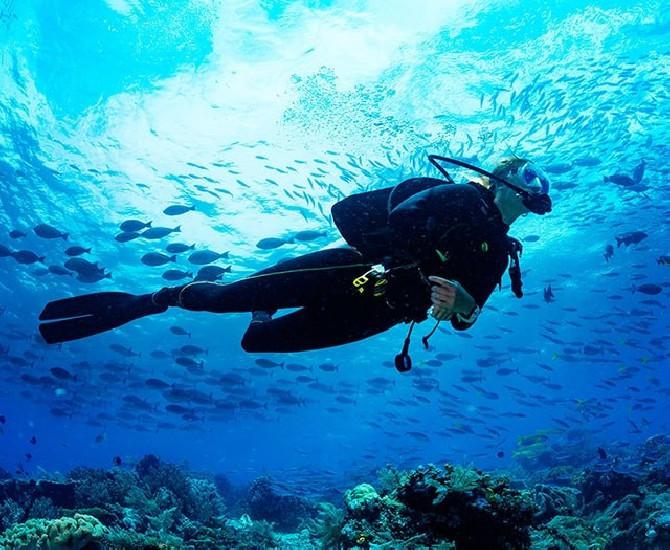 Inmersión Buceo Jávea