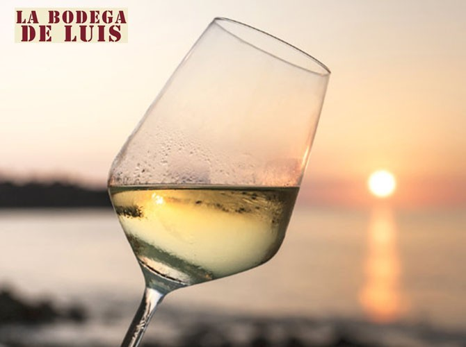 Vino Blanco Domine Verdejo Sauvignon